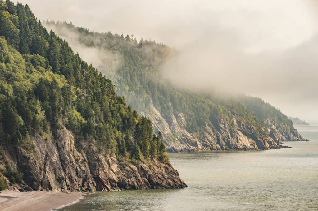 35 Best Things To Do In New Brunswick