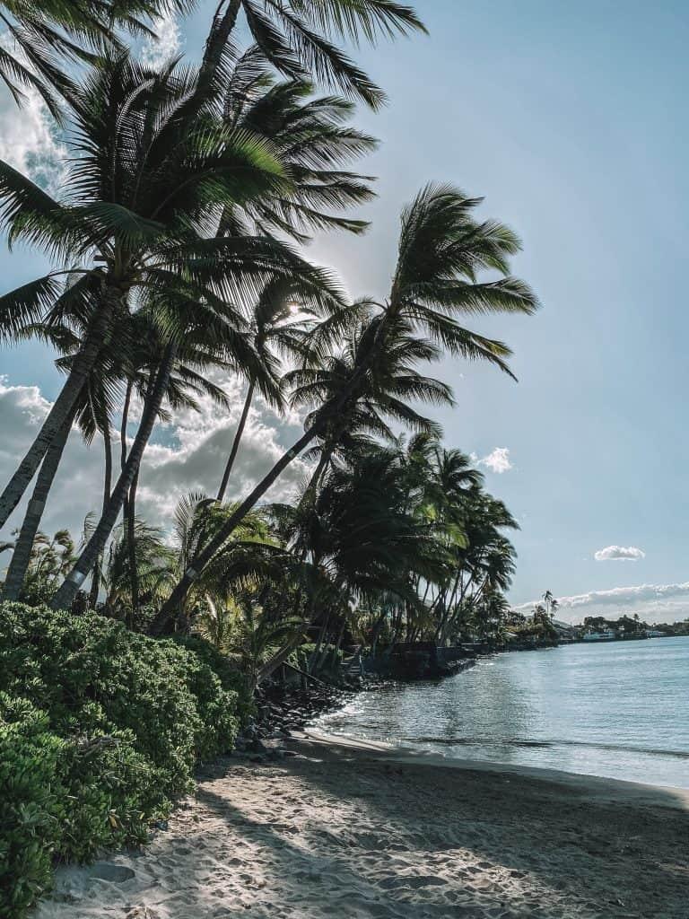 A Week in Maui