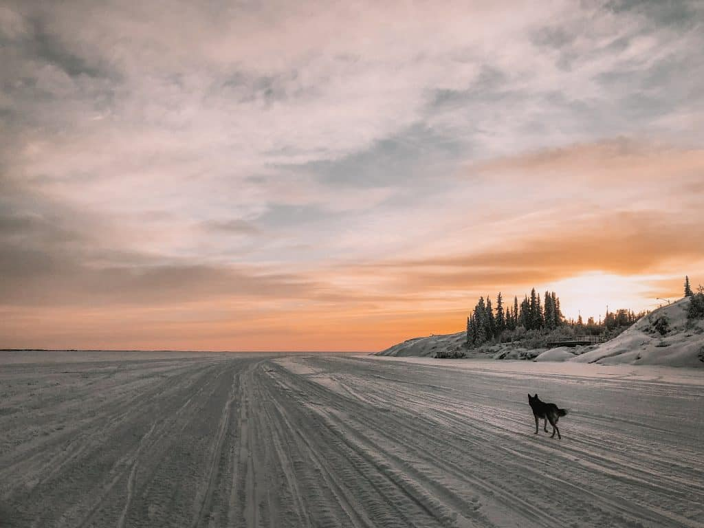 9 Things to Do in Yellowknife