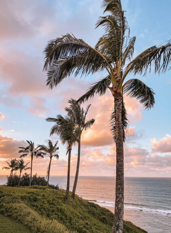 One Week in Kauai – 7 Day Kauai Itinerary