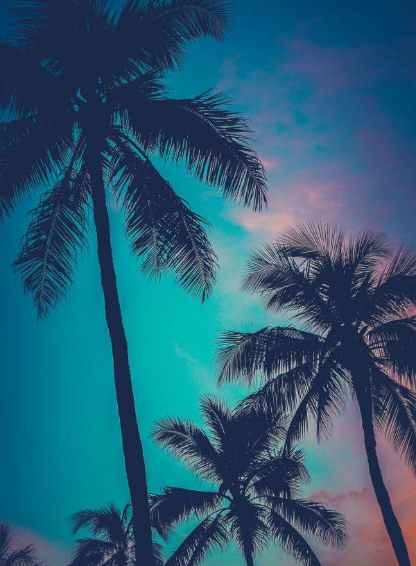 Hawaii 10 Day Itinerary – Island Hopping in Hawaii